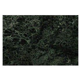 Woodland WL164 Zarośla - Drak Green Lichen (Bag 1.