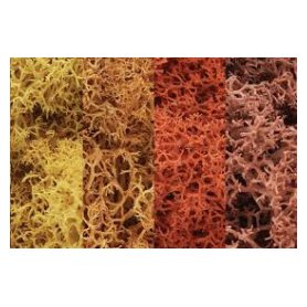Woodland WL165 Zarośla - Autumn Mix Lichen (Bag 1.