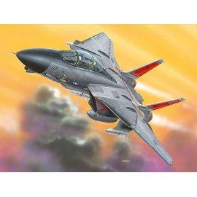 SAMOLOT 1100 06623 F-14D TOMCAT EASYKIT