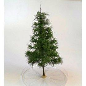 BSM Drzewo iglaste 23-25cm