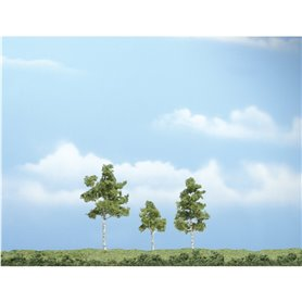 "Woodland WTR1605 1 1/2-3"" Prem Paper Birch 3/Pk"