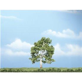 """Woodland WTR1609 4"""" Sycamore Tree 1/Pkg"""