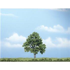 "Woodland WTR1615 4"" Beech Tree 1/Pkg"