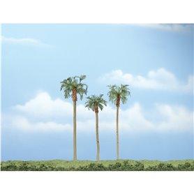 "Woodland WTR1617 3-4 1/2"" Prem Royal Palm 3/Pk"