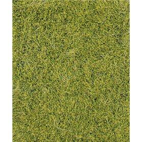 Trawa siateczka wiosenna ziele? 28x14 cm