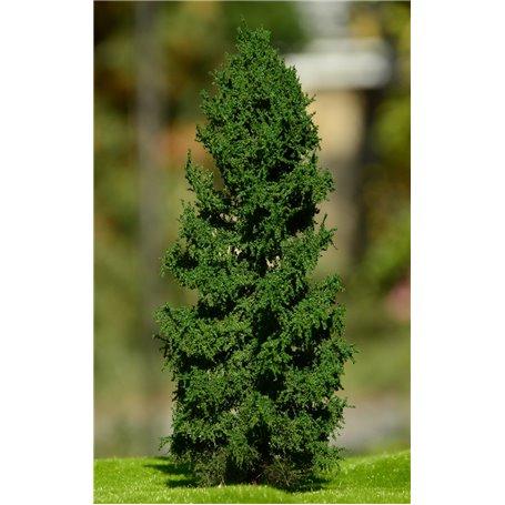 Freon Drzewko Modrzew Europejski – pień niski 8-12cm