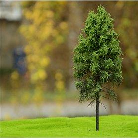 Freon Drzewko Modrzew Europejski – pień wysoki 8-12cm