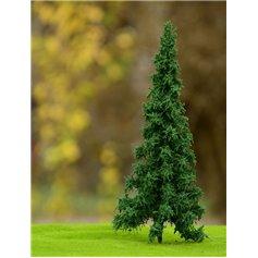 Freon Drzewko Świerk Pospolity 16-20cm