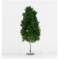 Freon Drzewko Brzoza 16-20cm