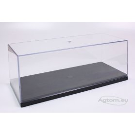 Clear case for 1/24 and 1/25 scale car AMT